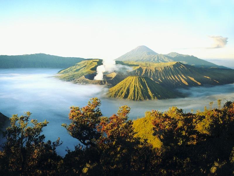 Wisata Gunung Bromo Garuda Citizen