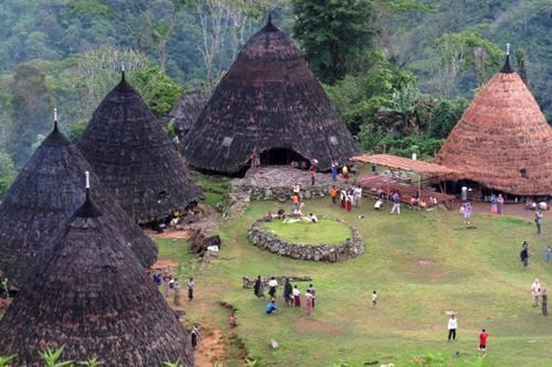 Kampung tradisional Waerebho, Manggarai. Foto: travel.detik.com
