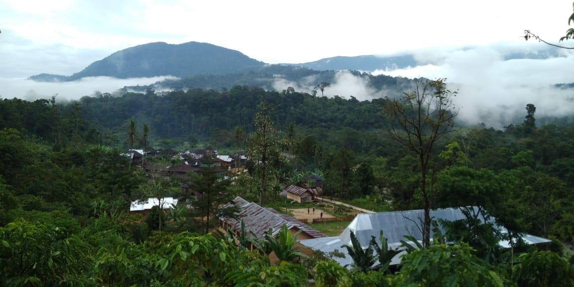Desa Sungai Lisai, Kecamatan Pinang Belapis, Kabupaten Lebong